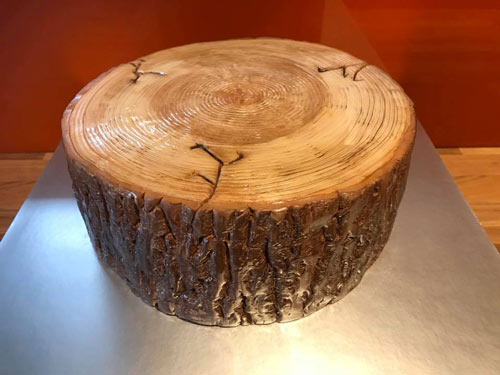Tree stump cake by Davarre Mckenzie