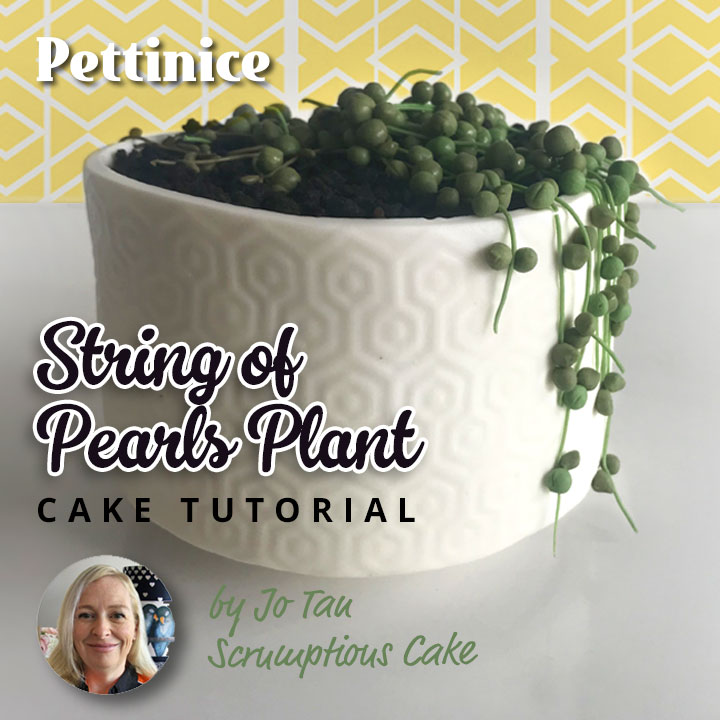 How to make a String of Pearls plant cake